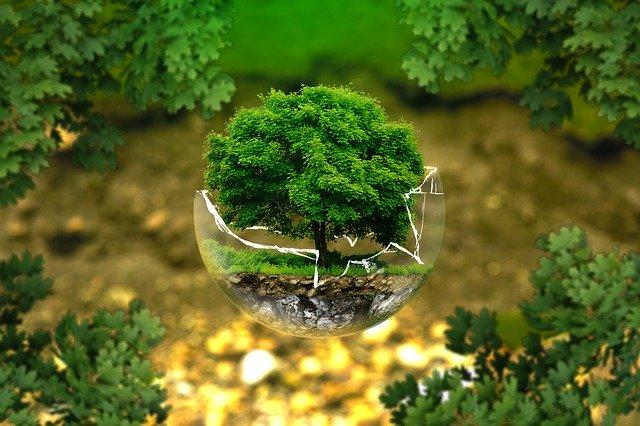 Smarthouse a ochrona środowiska